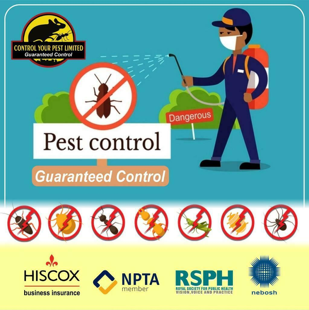 Pest Control In ilford IG1