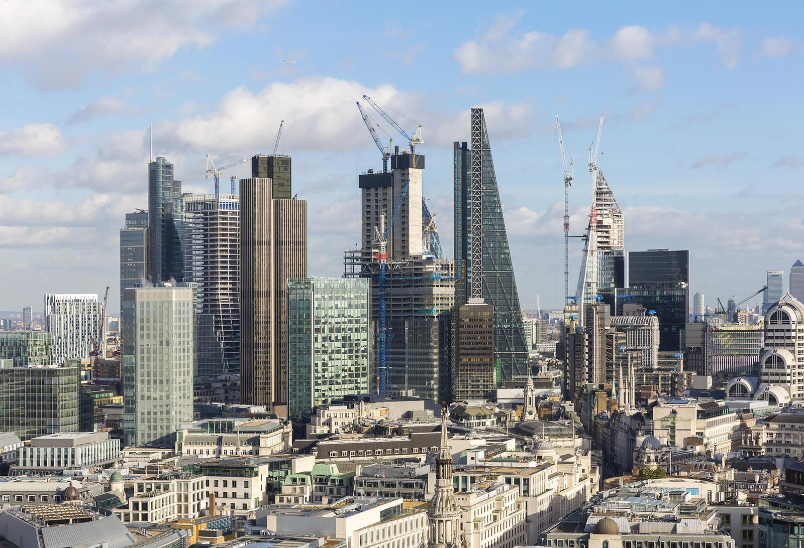 Offices Pest Management in London